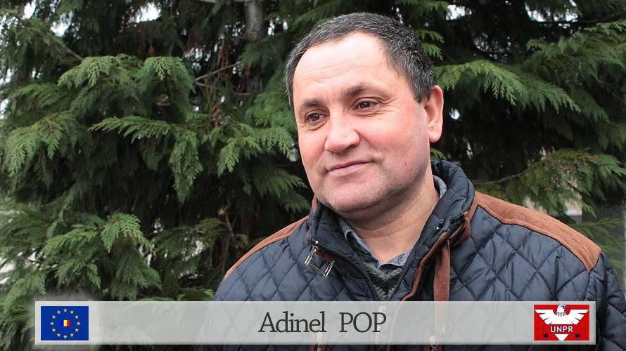 Adinel POP