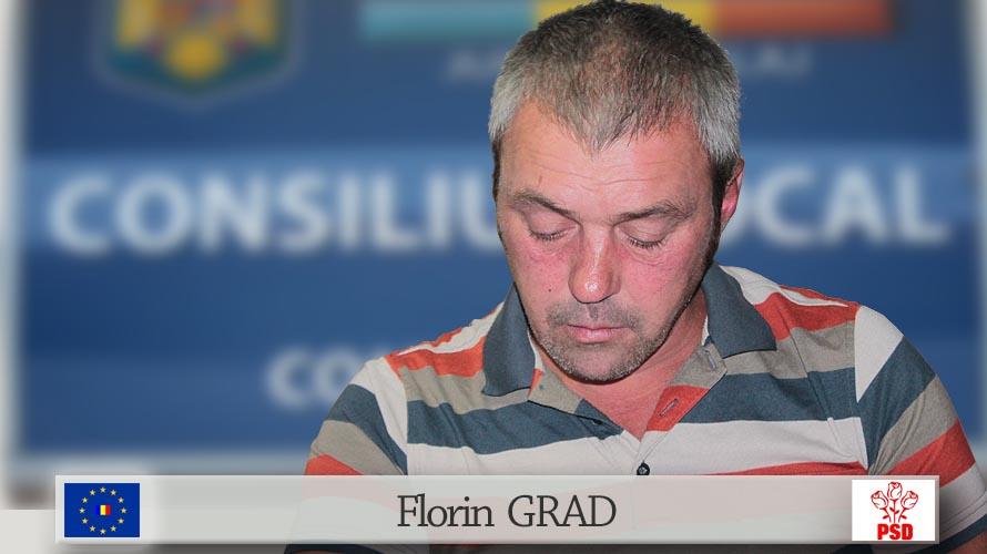 Grad Florin